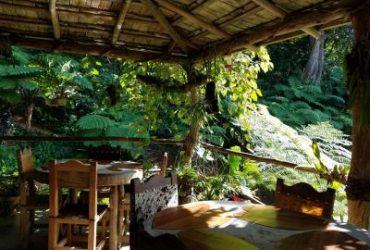 Casa Eco-Alojamiento El Manantial