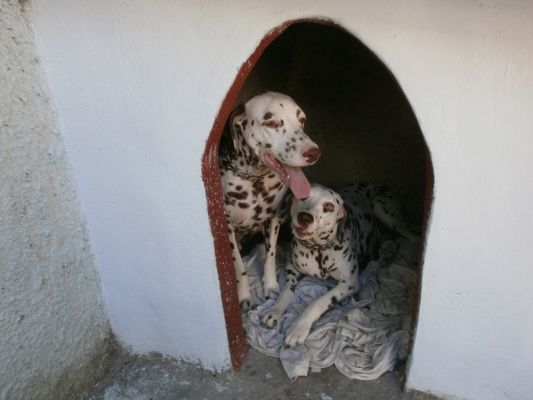 casa-hostal-luisa-tony-cienfuegos-4-14-jpg