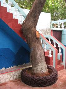 casa-hostal-miriam-trinidad-3-4-jpg