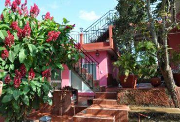 Casa Noharis y El Chino