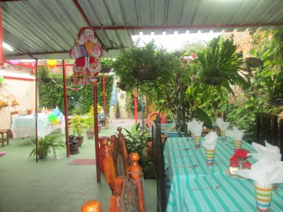 Garden and dinner area