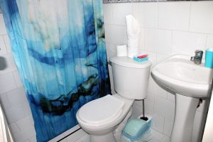 11bathroom1-300x200-jpg