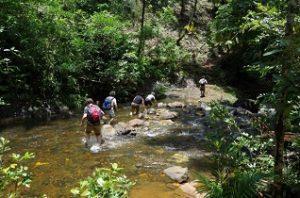 excursiones-por-senderos-y-rios-300x198-jpg