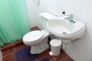 18bathroom2-300x200-jpg
